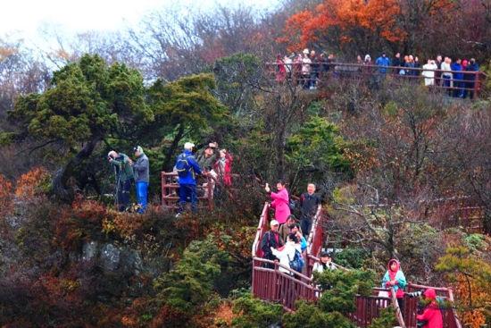 图为光雾山红叶吸引八方游人。巴中文旅供